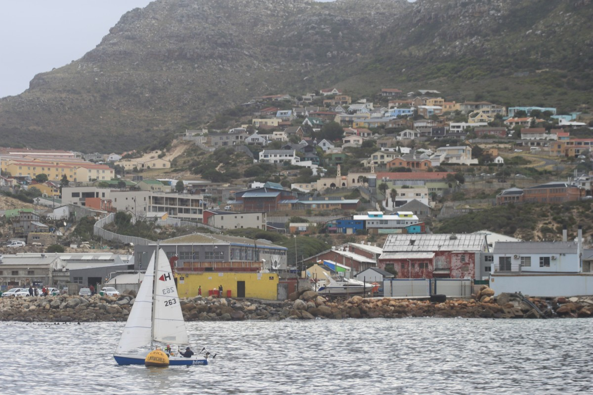 cape town hout bay ile des otaries